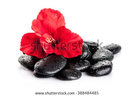 background of a spa with stones. Zen pebbles and flower - stock photo