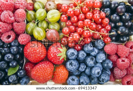 Background of assorted fresh berries mixed collection  surface close up macro shot - stock photo
