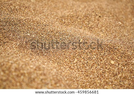 Background of Beach Sand