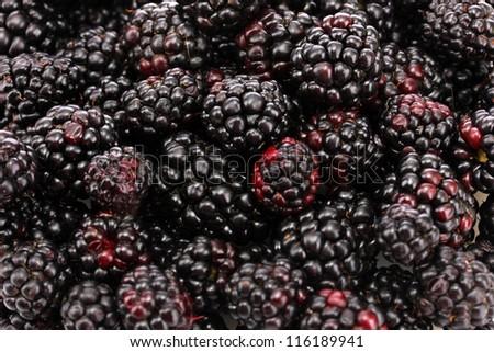 background of beautiful blackberries - stock photo