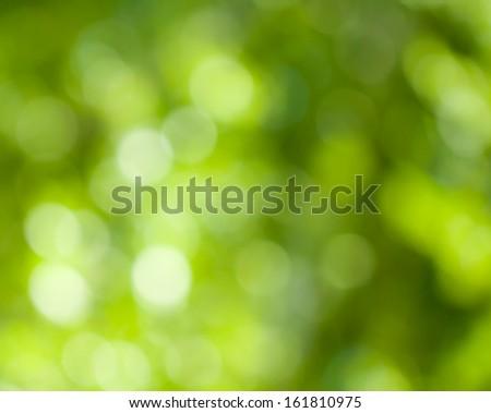 background of beautiful green nature bokeh - stock photo