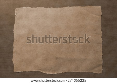 background of blank paper texture