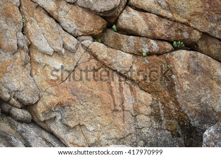 Background of colored sea stones close up - stock photo