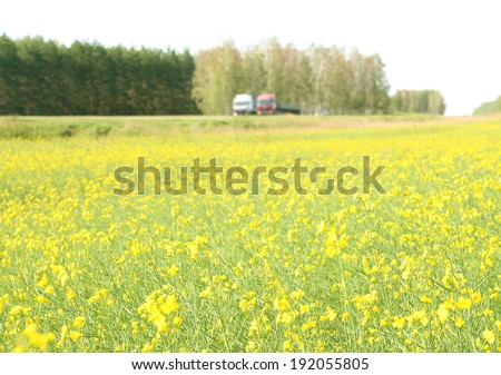 Background of Countryside road with rapeseed green and yellow field alongside under sky Raps summer meadow with trucks and car driving on highway - stock photo