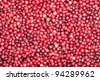 background of Cranberry - stock photo