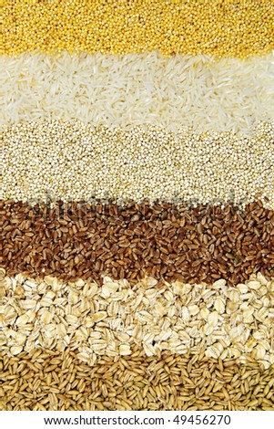 Background of different kinds of grains close up - stock photo