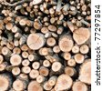 Background of dry chopped firewood logs stacked up in a pile - stock photo