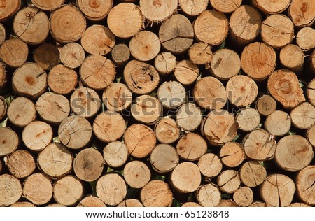 Background of dry chopped firewood logs stacked up on top of each other in a pile - stock photo
