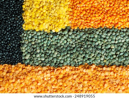 Background of dry lentil different varieties and colors: red, green french lentils, beluga, yellow split, red football - stock photo