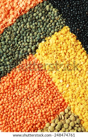 Background of dry lentil different varieties and colors: red, green french lentils, black beluga, yellow split, red football, laird - stock photo