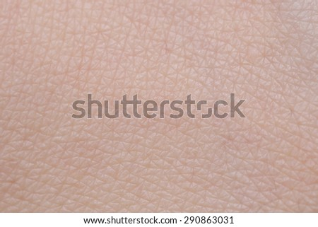 background of female human skin texture - stock photo