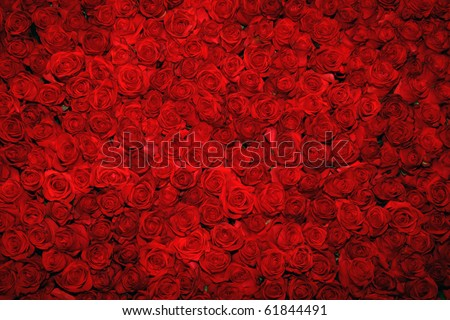 Background of flowers - stock photo