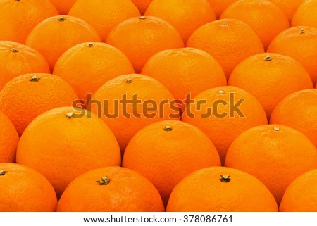Background of fresh, juicy, bright mandarins - stock photo