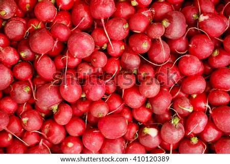 Background of fresh red radishes on the counter in the store.