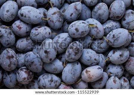 Background of fresh ripe healthy plums - stock photo