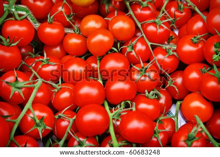 background of fresh tomatos for sale - stock photo