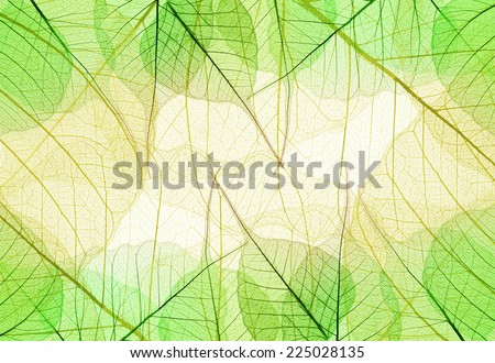 Background of Green and Yellow Leaves - natural cell structure - stock photo