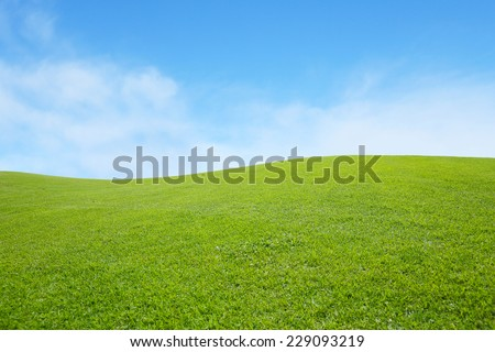 background of green field with blue sky - stock photo