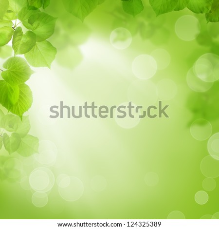 Background of green leaves, summer or spring season - stock photo