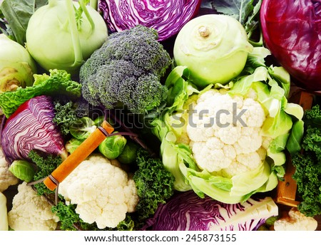 Background of healthy fresh cruciferous vegetables with brioccoli, cabbage, cauliflower, brussels sprouts kale and kohlrabi, close up full frame - stock photo