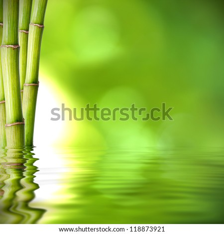 background of natural spa with plant and reflection in the water - stock photo