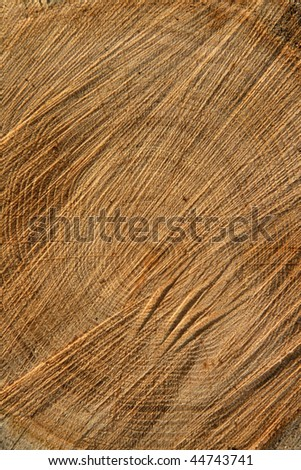 background of oak firewood wood stock - stock photo