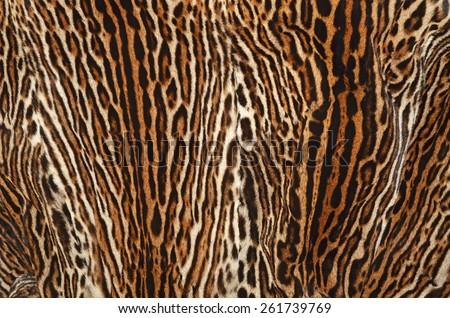 background of ocelot fur coat - stock photo