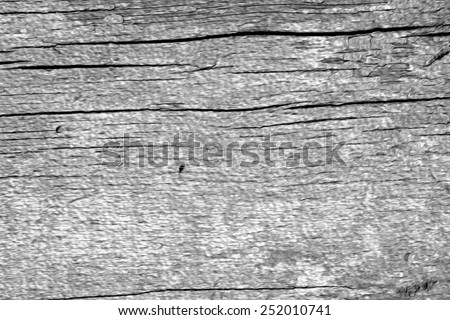 background of old barn wood panel - stock photo