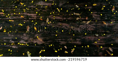 Background of old rough rustic decay wood with yellow petals and leaves. - stock photo