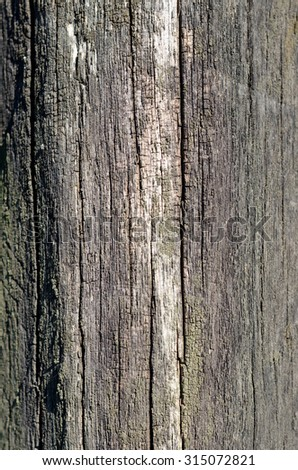 Background of old wood damaged by the time - stock photo