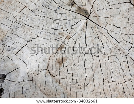 Background of old wooden surface - stock photo