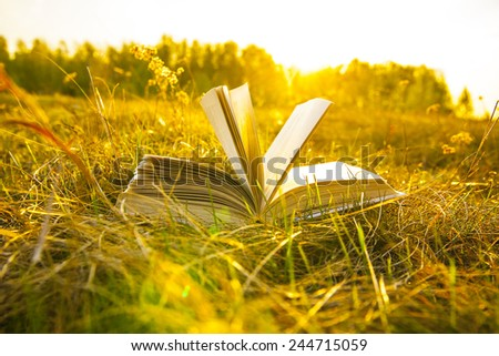Background of open texture page book with horizon on sunset  lying in autumn fall field on dry yellow green fresh grass on sun set sky and spring forest backdrop Idea of back to school - stock photo