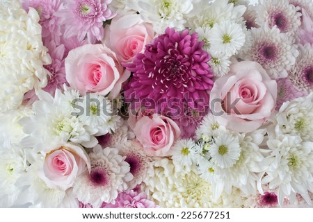 Background of pink and white roses and daisies