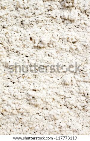Background of raw cotton - stock photo