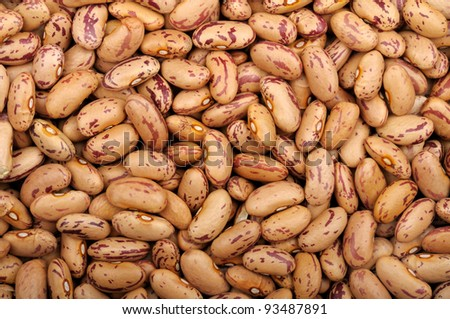 background of raw dry uncooked Pinto beans - stock photo