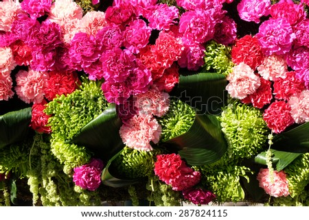 background of red and pink carnations and green leaf - stock photo