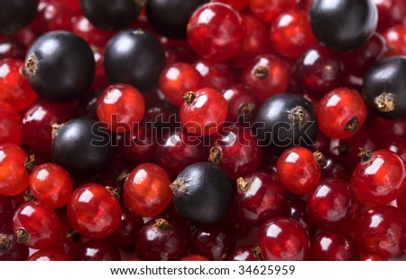 Background of red currant and black currant - stock photo