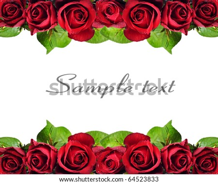 Background of red roses - stock photo