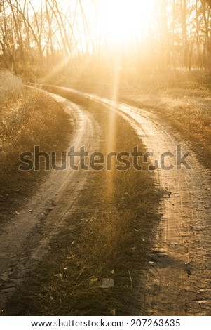 Background of red sunset over rural textured land road near yellow reap summer or autumn wheat field and trees in forest - stock photo