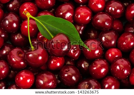 Background of ripe cherries - stock photo