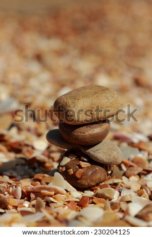 Background of seashells, sand, pebbles selected focus - stock photo