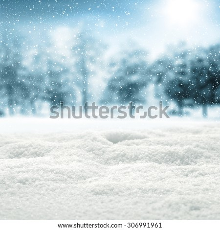 background of snow and trees  - stock photo