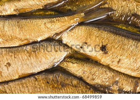 Background of the cooked sea sprats. Cooked fish