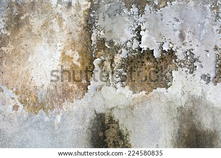 Background of the old white walls with different shades. - stock photo
