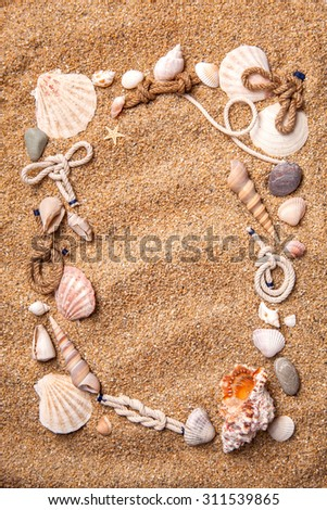 background of various shells on sand. Top view