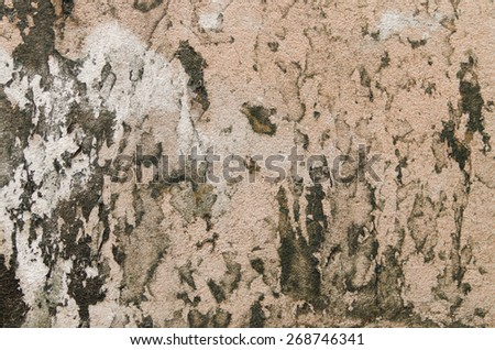 Background of wall pattern texture - stock photo