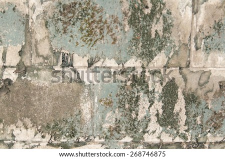 Background of wall pattern texture