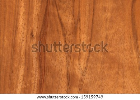 background of wood grain from Persian or English walnut, Juglans regia - stock photo