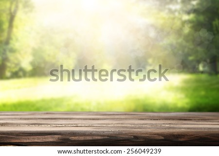 background of worn table and green garden of spring time  - stock photo
