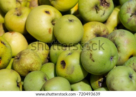 background of yellow apples